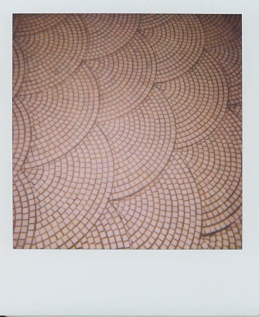 pastis-floor