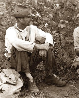 cotton-picker